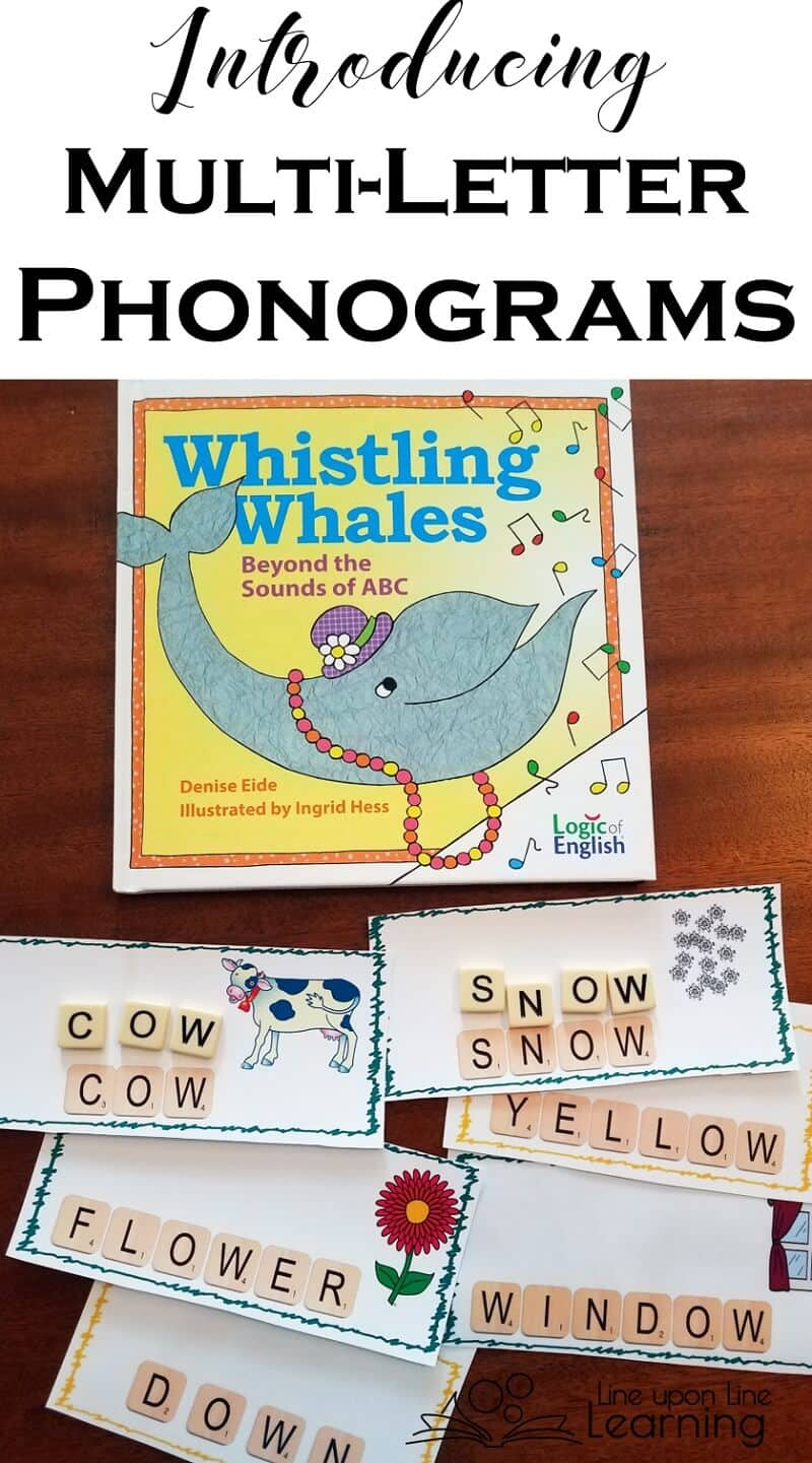 We sort words with multi-letter phonograms to better recognize their place in familiar sight words.