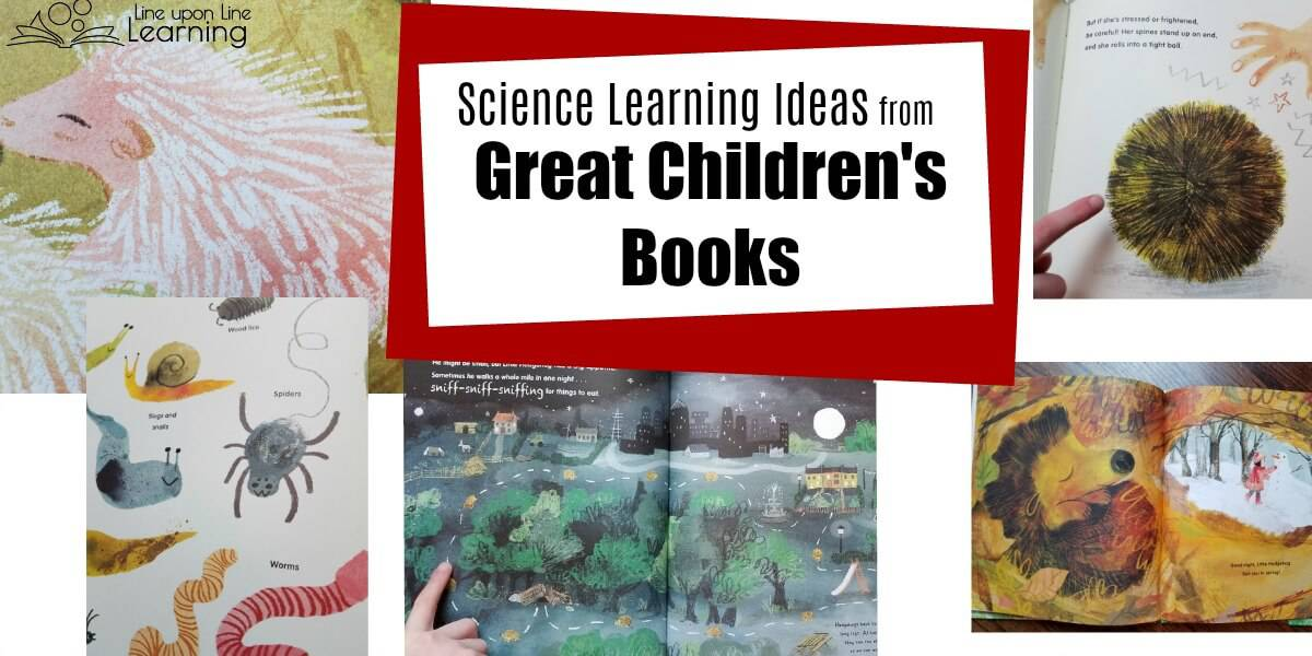 Learn about hedgehogs with Prickly Hedgehogs, a great book for adding science to your homeschool kindergarten science curriculum!