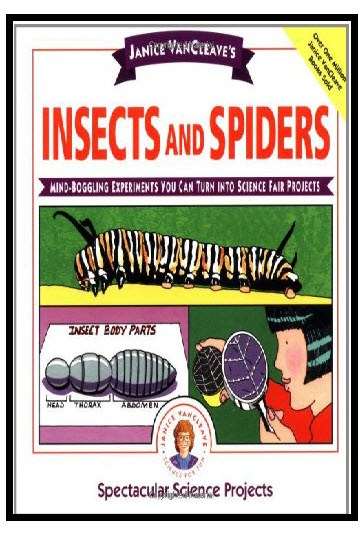 Insects and Spiders: Science Fair Projects