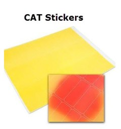 JVC CAT Stickers