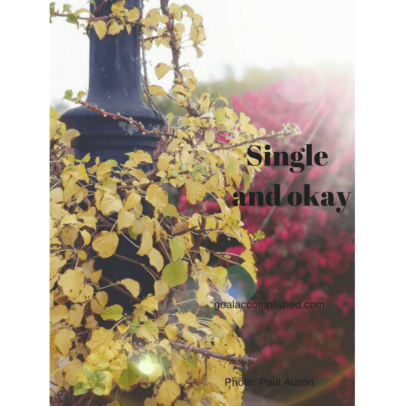 Single and okay: vine around lamppost