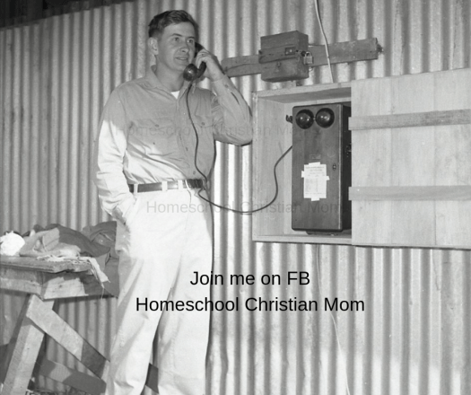 Limiting screen time: Picture shows a young man 1962, on an old-fashioned phone. Join me on FB Homeschool with Confidence!