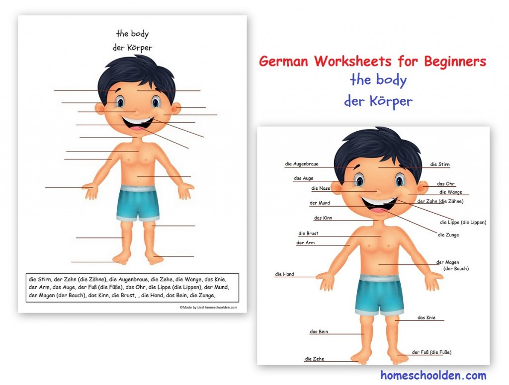 Worksheets For Beginners