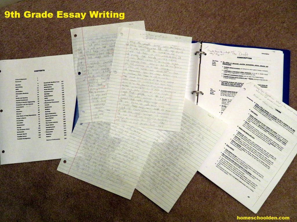 Essay Writing Ld S 9th Grade Writing Activities