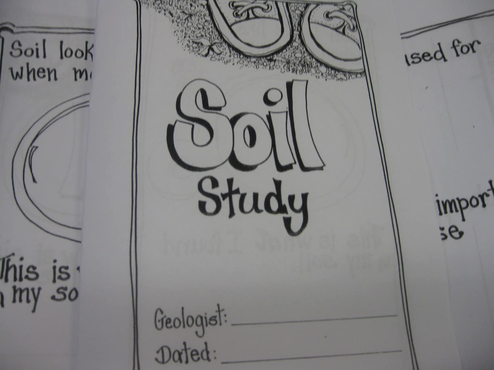 Worksheet About Soil