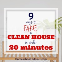 Fake a Clean House in 20 Minutes