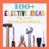 100+ High School Elective Ideas for Homeschoolers