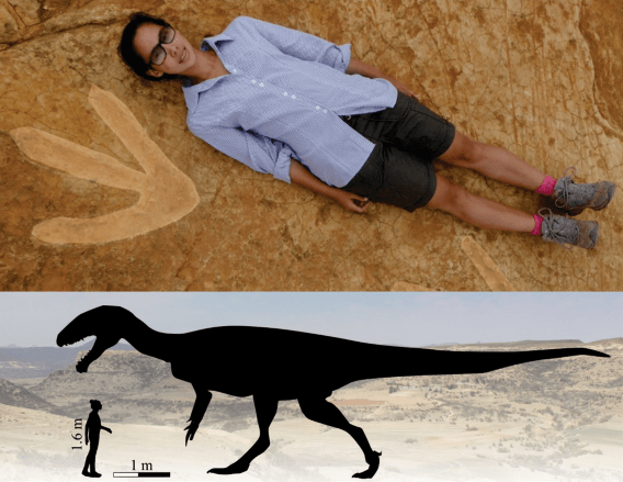 Did Dinosaurs and Humans Coexist?