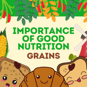 Importance of Good Nutrition Grains