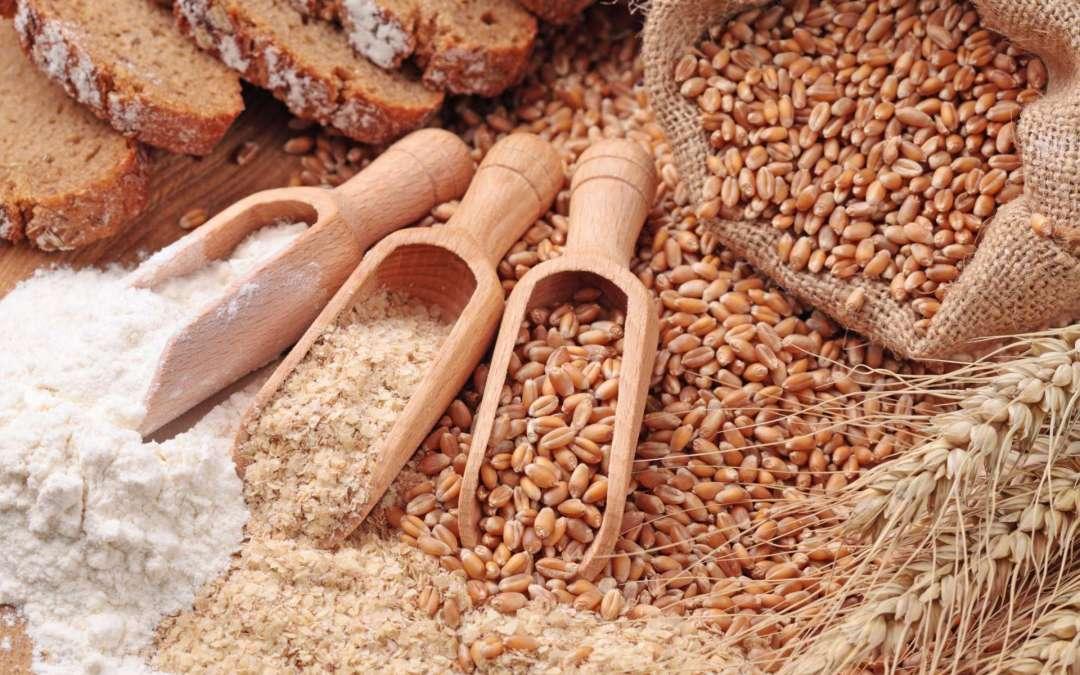 Whole Wheat vs White Flour Baking