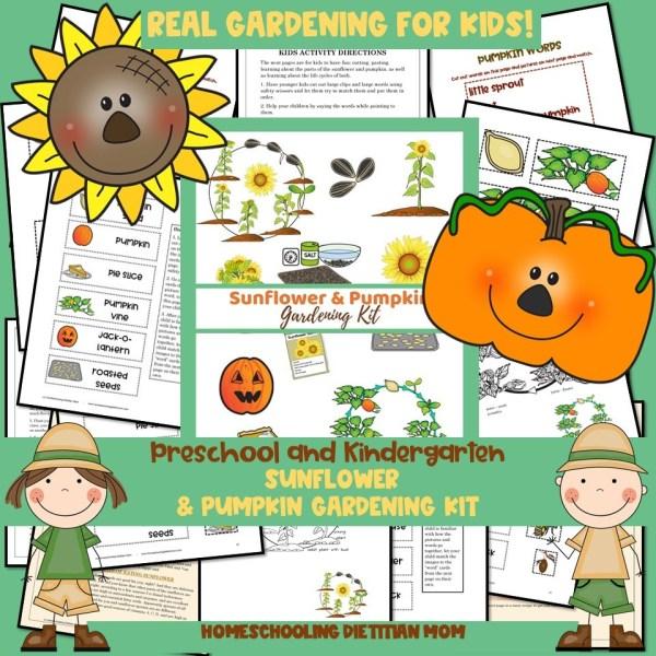 Sunflower and Pumpkin Gardening Kit
