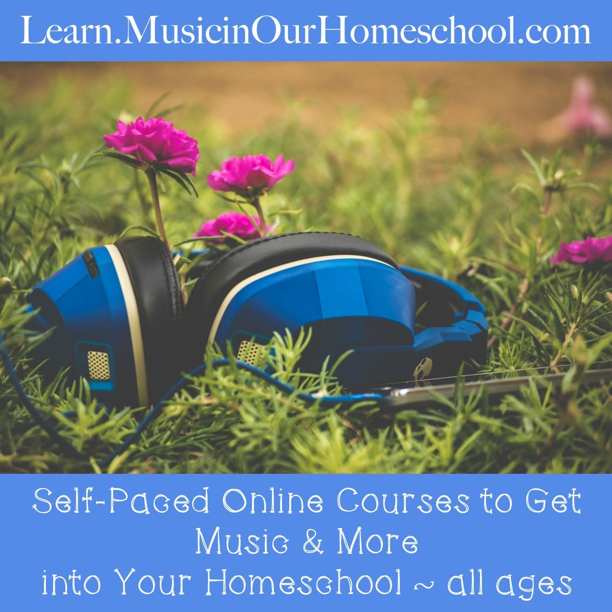 Learn Music in our Homeschool