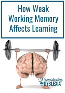 Working Memory and Learning Struggles