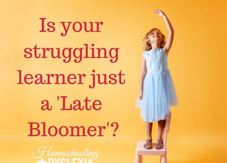 Late Bloomer or Struggling Learner?
