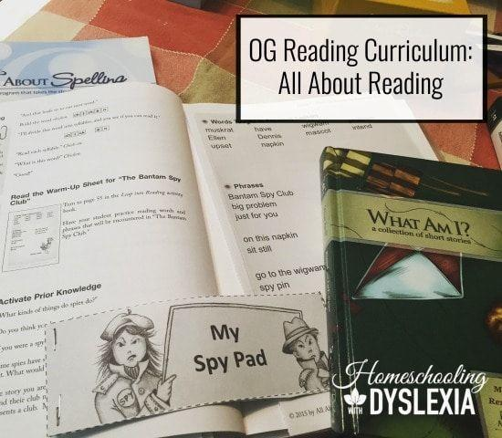Orton Gillingham Reading Lesson
