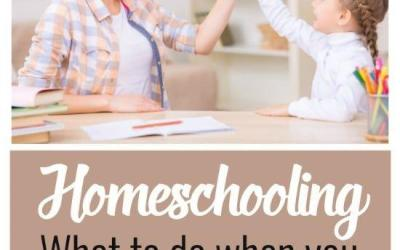 Homeschooling When You Want to Quit