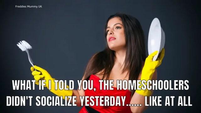 Funny Homeschool Memes