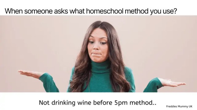 Homeshooling Funny Memes