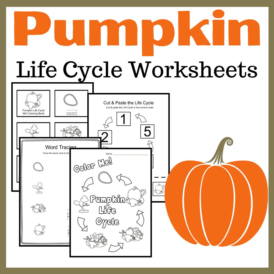 Printable Pumpkin Life Cycle Activities For Preschool