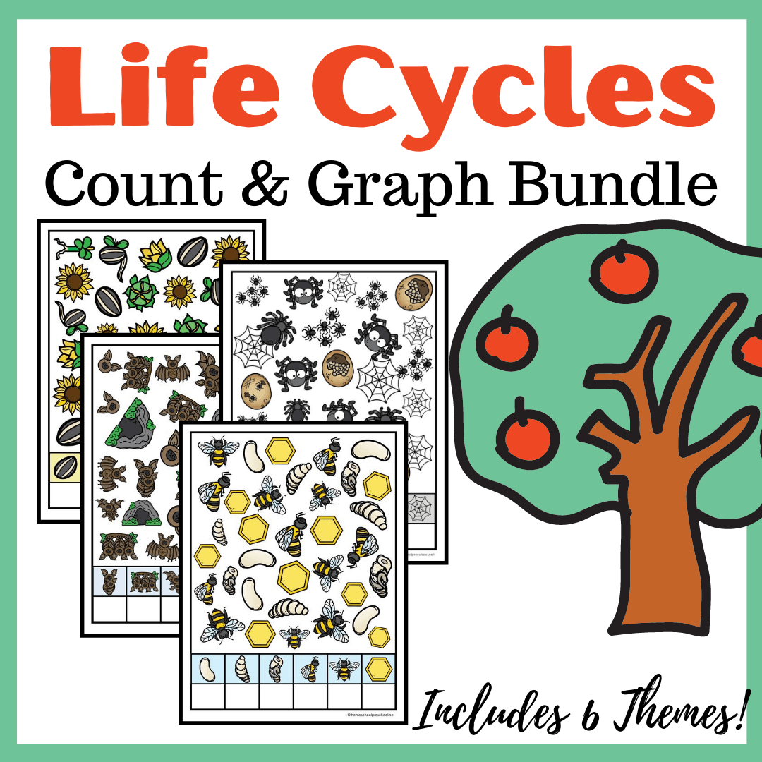 Printable Life Cycle Count And Graph Worksheets