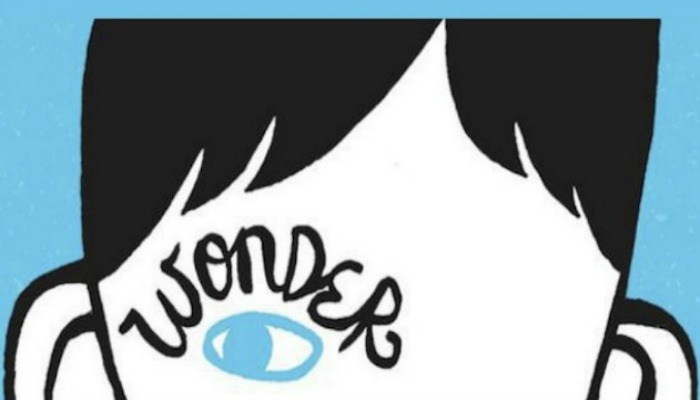 wonder book cover blue background with a white and black face