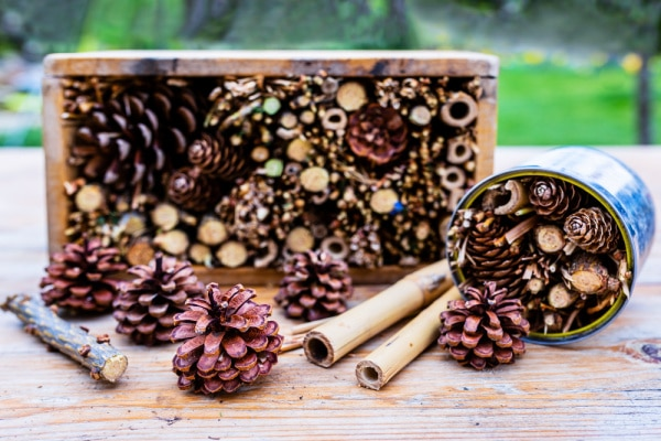 Outdoor Class Room ideas with a bug house made from sticks, pine cones and other natural items