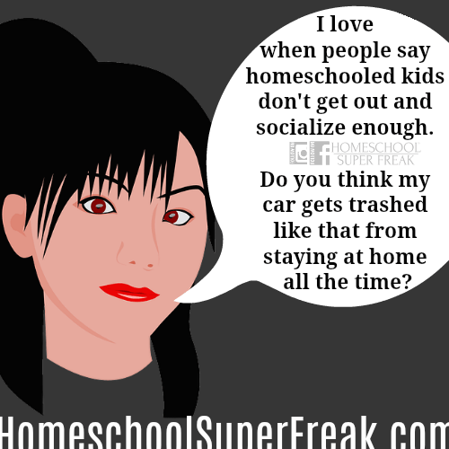 Homeschool Socialization Meme: Maybe We Socialize TOO Much? : cartoon woman not smiling