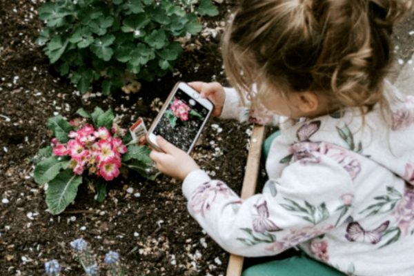 #18 IN HOW TO HOMESCHOOL SERIES: How to homeschool preschool or kindergarten. young girl taking a picture of a flower with a phone