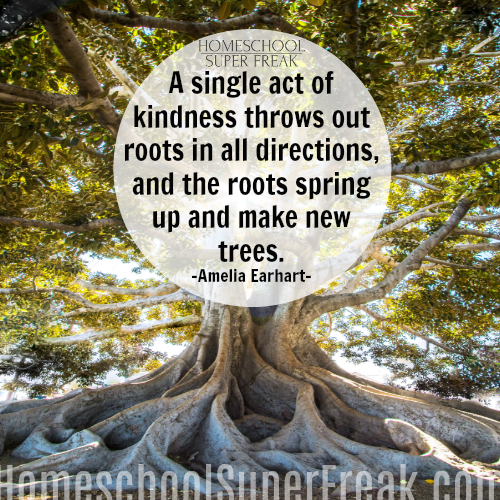 10 Easy Kindness Projects for Kids | Kindness Quotes Amelia Earhart