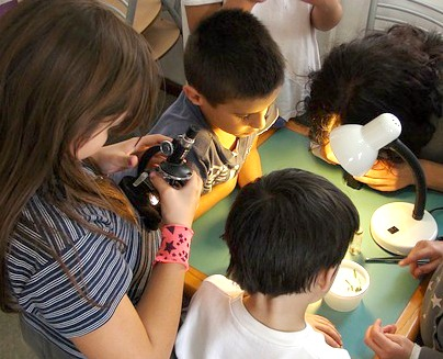 What is the best microscope for home use for kids / best homeschool microscope? group of kids huddled over a table looking at a microscope