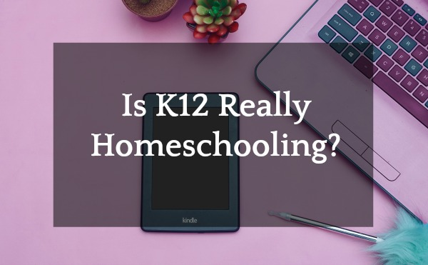 Is K12 Homeschooling? laptop tablet pen and cactus on a purple table