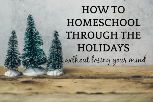 Christmas Homeschool Activities to Save Sanity During Holidays