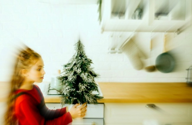young girl holding a small green christmas tree for Christmas Traditions