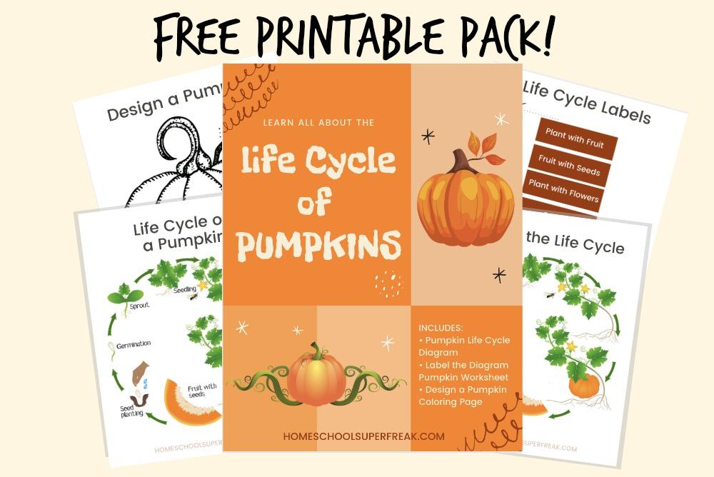 Free printable pumpkin life cycle book