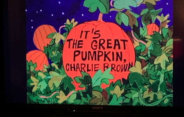 It's The Great Pumpkin Charlie Brown lesson plans