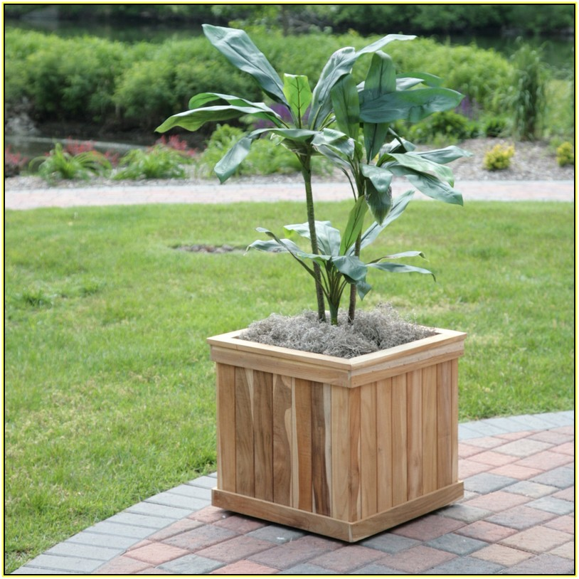 What Kind Wood Use Raised Garden