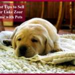 5 Best Tips to Sell Your Lake Zoar Home with Pets