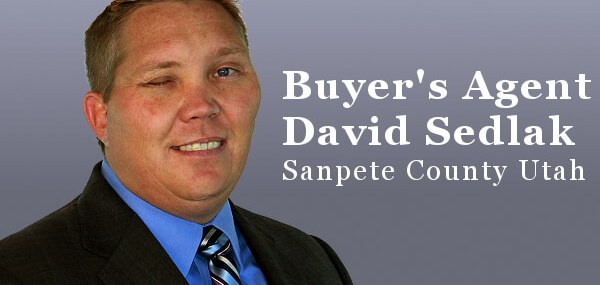 Realtor David Sedlak BUyer's Agent Sanpete County Utah