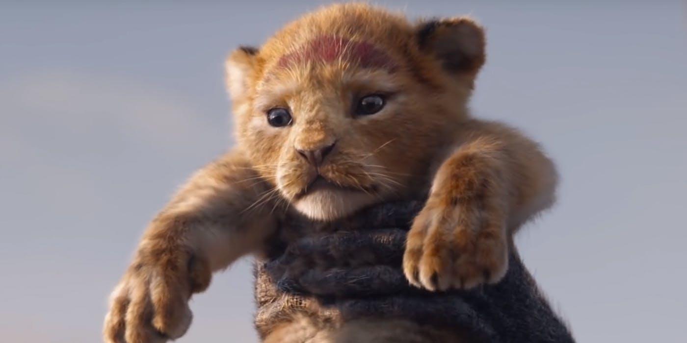 disney u0026 39 s the lion king 2019 trailer