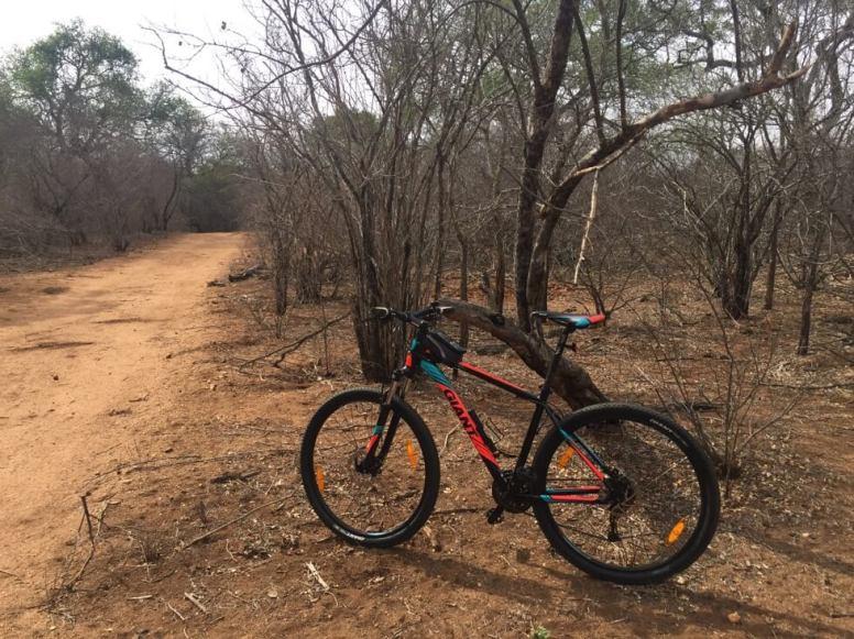 Mountainbiken bij Krugerpark