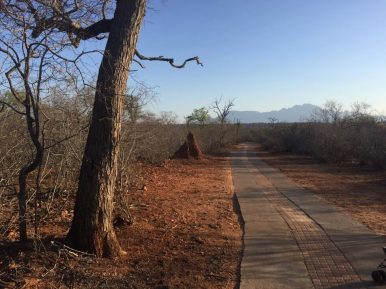 Route mountainbike