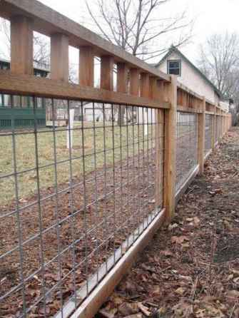 38 easy cheap backyard privacy fence design ideas
