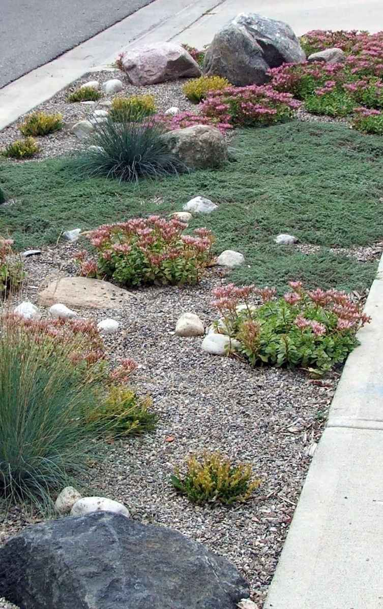 44 low maintenance small front yard landscaping ideas