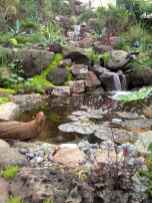 46 awesome backyard ponds and water garden landscaping ideas