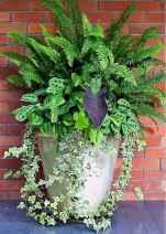 08 fabulous summer container garden flowers ideas