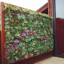 08 stunning vertical garden for wall decor ideas