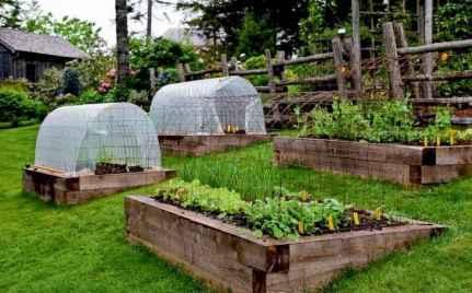 13 affordable backyard vegetable garden design ideas