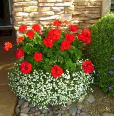 13 fabulous summer container garden flowers ideas
