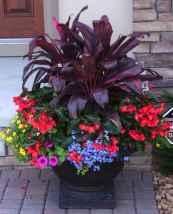 19 fabulous summer container garden flowers ideas