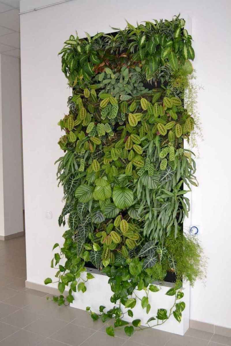 27 fantastic vertical garden indoor decor ideas